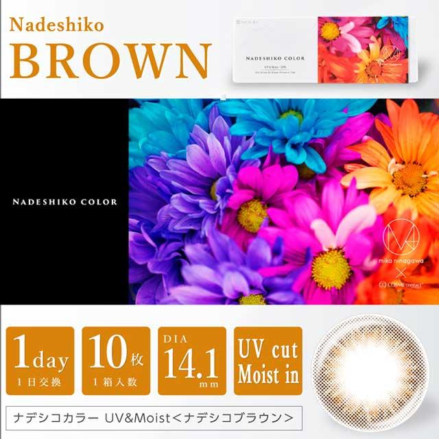 ナデシコブラウン1