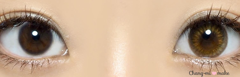 ワンデーサークルブラウン12